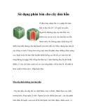 Sử dụng phân bón cho cây dưa hấu