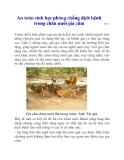 An toàn sinh học phòng chống dịch bệnh trong chăn nuôi gia cầm