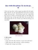 Quy trình tiêm phòng vắc xin cho gà, vịt