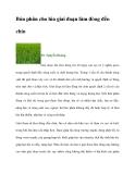 Bón phân cho lúa giai đoạn làm đòng đến chín