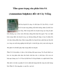 Tầm quan trọng của phân bón SA (Ammonium Sulphate) đối với Cây Trồng