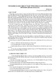 """Nghiên cứu khoa học """" Thử nghiệm và hoàn thiện kỹ thuật trồng rừng và nuôi dưỡng rừng Giổi Nhung (Michelia braianensis) """""""