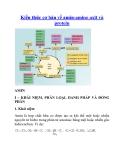 Kiến thức cơ bản về amin-amino axit và protein