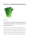 Mô hình rau sạch diện tích nhỏ hiệu quả cao