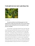 Cách giữ trái cây tươi xanh được lâu
