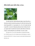 Điều khiển mai chiếu thủy ra hoa
