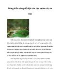 Dùng kiến vàng để diệt sâu cho vườn cây ăn trái