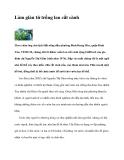 Làm giàu từ trồng lan cắt cành