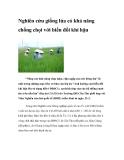 Nghiên cứu giống lúa có khả năng chống chọi với biến đổi khí hậu