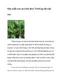 Sản xuất rau an toàn theo Viet
