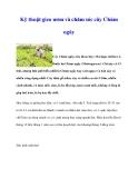 Kinh nghiệm gieo ươm và chăm sóc cây Chùm ngây