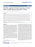 """Báo cáo hóa học: """"  Atomistic aspects of ductile responses of cubic silicon carbide during nanometric cutting"""""""