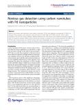 """Báo cáo hóa học: """"   Noxious gas detection using carbon nanotubes with Pd nanoparticles"""""""