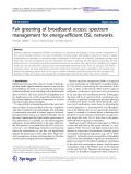"Báo cáo hóa học: "" Fair greening of broadband access: spectrum management for energy-efficient DSL networks"""