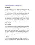 """Nghiên cứu khoa học """" Kỹ thuật trồng Cây trẩu lá xẻ (Vernicia montana Lour) """""""