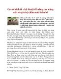 Cơ sở kinh tế - kỹ thuật để nâng cao năng suất và giá trị chăn nuôi trâu bò