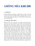 GIỐNG MÍA K88-200