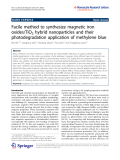 "Báo cáo hóa học: ""   Facile method to synthesize magnetic iron oxides/TiO2 hybrid nanoparticles and their photodegradation application of methylene blue"""
