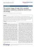 "Báo cáo hóa học: ""  The current image of single SnO2 nanobelt nanodevice studied by conductive atomic force microscopy"""