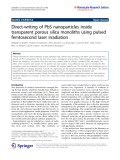 """Báo cáo hóa học: """"   Direct-writing of PbS nanoparticles inside transparent porous silica monoliths using pulsed femtosecond laser irradiation"""""""