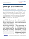 "Báo cáo hóa học: ""   Crystal structure and electrical properties of bismuth sodium titanate zirconate ceramics"""