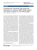 """Báo cáo hóa học: """"   Precoding and Transmitter-Side processing techniques for multiuser MIMO OFDM systems with special emphasis on the PAPR problem"""""""