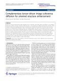 "Báo cáo hóa học: ""   Complementary tensor-driven image coherence diffusion for oriented structure enhancement"""