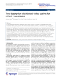 """Báo cáo hóa học: """"   Two-description distributed video coding for robust transmission"""""""