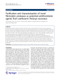 """Báo cáo hóa học: """"  Purification and characterization of novel fibrinolytic proteases as potential antithrombotic agents from earthworm Perionyx excavatus"""""""