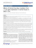 """Báo cáo hóa học: """"  Effects of internal low-dose irradiation from 131 I on gene expression in normal tissues in Balb/c mice"""""""