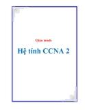 Giáo trình hệ tính CCNA 2