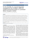 "Báo cáo hóa học: ""On the feasibility of a channel-dependent scheduling for the SC-FDMA in 3GPP-LTE (mobile environment) based on a prioritizedbifacet Hungarian method"""