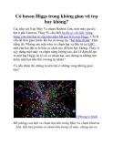 Có boson Higgs trong không gian vũ trụ hay không?