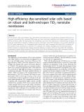 "Báo cáo hóa học: "" High-efficiency dye-sensitized solar cells based on robust and both-end-open TiO2 nanotube membranes"""