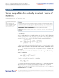 """báo cáo hóa học: """" Some inequalities for unitarily invariant norms of matrices"""""""