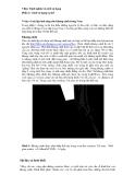 Vray-Định nghĩa và cách sử dụng - Phần 2 cách sử dụng cụ thể