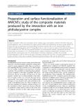 Asedegbega-Nieto et al. Nanoscale Research Letters 2011, 6:353