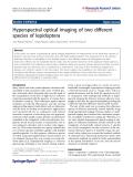 Medina et al. Nanoscale Research Letters 2011, 6:369