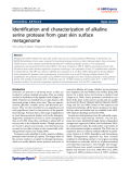 """Báo cáo hóa học: """" Identification and characterization of alkaline serine protease from goat skin surface metagenome"""""""