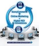 Contemporary Research in E-Marketing_7