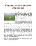 Ứng dụng sản xuất giống lúa chịu mặn cao