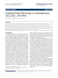 "Báo cáo hóa học: "" Scanning Probe Microscopy on heterogeneous CaCu3Ti4O12 thin films"""