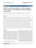 """Báo cáo hóa học: """"   Growth and characterization of gold catalyzed SiGe nanowires and alternative metal-catalyzed Si nanowires"""""""