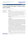 "Báo cáo hóa học: "" A survey of black hole attacks in wireless mobile ad hoc networks"""