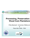 """Báo cáo khoa học nông nghiệp """" Processing, Preservation and Wood from Plantations """""""