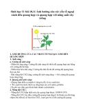 Sinh học 11 bài 10,11 Ảnh hưởng của các yếu tố ngoại cảnh đển quang hợp và quang hợp với năng suất cây trồng