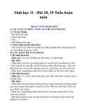 Sinh học 11 - Bài 18, 19 Tuần hoàn máu