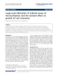 """Báo cáo hóa học: """"  Large-scale fabrication of ordered arrays of microcontainers and the restraint effect on growth of CuO nanowires"""""""