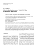 "Báo cáo hóa học: ""  Research Article Subjective Quality Assessment of H.264/AVC Video Streaming with Packet Losses"""