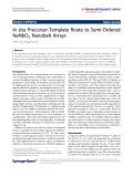 """Báo cáo hóa học: """"  In situ Precursor-Template Route to Semi-Ordered NaNbO3 Nanobelt Arrays"""""""